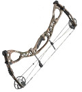image of a Hoyt Charger compound bow