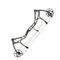 image of Motive 6 compound bow by Bear Archery